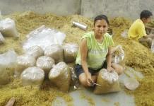 Divya Rawat - The Mushroom Lady of Uttarakhand