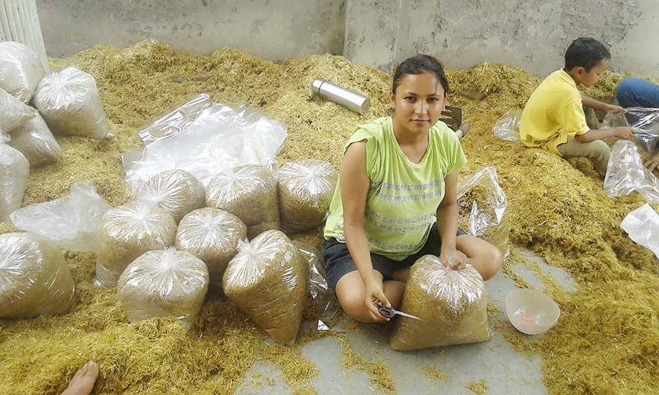 Divya Rawat -  The Mushroom Lady of Uttarakhand